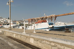 Paros, Greece, 15 August 2015. Octopus out in the sun to dry against the sea and a fishing boat. Royalty Free Stock Images