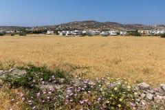 Paros Island Landscape, Cyclades Stock Image