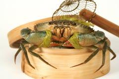 parowiec żywy kraba fotografia stock