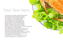 Parowy kraba menu Obrazy Royalty Free