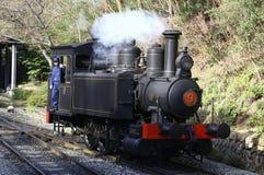Parowy pociąg z kierowcą zdjęcie royalty free