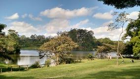 Parque做卡尔穆-圣保罗,巴西 免版税库存图片