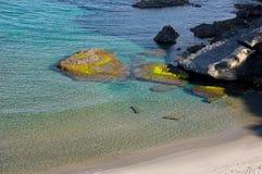 Parque自然Cabo de加塔角 库存照片