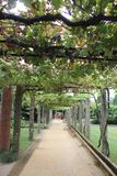 Parque делает Anardo - Ponte de Лиму стоковые изображения