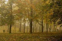 Parque Imagen de archivo libre de regalías