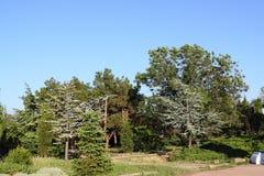 Parque 2 imagenes de archivo