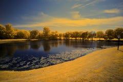 Parque Foto de Stock Royalty Free
