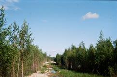 Parque Imagen de archivo