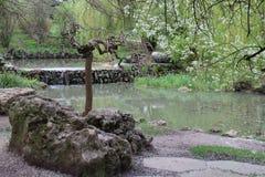 Parque 4 imagen de archivo