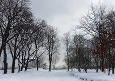 Parque abandonado no inverno imagem de stock royalty free