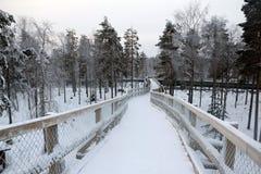 Parque agradável em um dia e em uma neve de inverno Fotografia de Stock Royalty Free