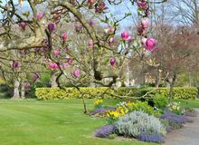 Parque agradable en primavera Fotos de archivo libres de regalías