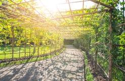 Parque ajardinado do jardim formal Fotografia de Stock Royalty Free