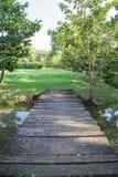 Parque ajardinado do jardim formal Foto de Stock Royalty Free