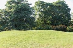 Parque ajardinado do jardim formal Fotos de Stock