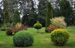 Parque ajardinado perto da construção Imagem de Stock Royalty Free
