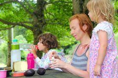 Parque al aire libre de la comida campestre de la familia de la hija de la madre Foto de archivo libre de regalías