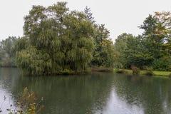 Parque alemán del otoño de la naturaleza Foto de archivo libre de regalías