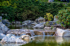 Parque, Aqua Zoo, sseldorf del ¼ de DÃ Fotos de archivo