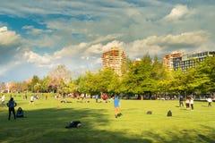 Parque Araucano w Lesie Condes Obraz Royalty Free