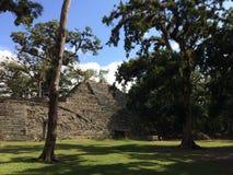 Parque arqueológico imagenes de archivo