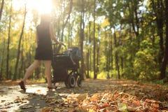 Parque asoleado del otoño Foto de archivo libre de regalías