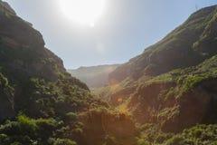 Parque Barranco de Ruiz. Hiking on Tenerife. Royalty Free Stock Image
