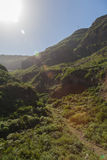 Parque Barranco de Ruiz. Hiking on Tenerife. Royalty Free Stock Photos