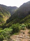 Parque Barranco de Ruiz. Hiking on Tenerife. Stock Photography