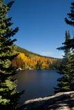 Parque-Bearlake del nacional de la montaña rocosa fotografía de archivo
