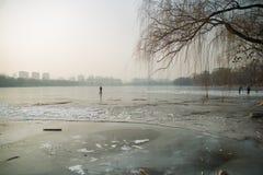 Parque beijing do inverno foto de stock