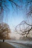Parque beijing do inverno imagem de stock