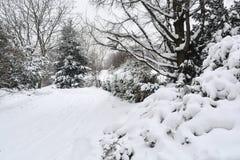 Parque bloqueado pela neve Foto de Stock