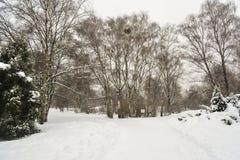 Parque bloqueado pela neve Imagens de Stock Royalty Free