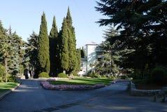 Parque bonito com as aleias perto do hotel Os olhos admiram grandes coníferas e arbustos Fotos de Stock Royalty Free