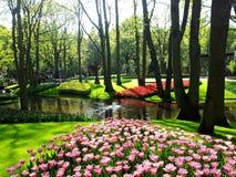 Parque bonito com lago e flores, Keukenhof, Países Baixos Foto de Stock