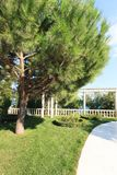 Parque bonito com pancadinha no céu azul do dia do suumer - projeto do jardim - ajardine o fundo Fotografia de Stock Royalty Free