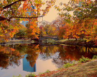 Parque bonito em Boston ao longo de Charles River em um dia do outono fotografia de stock