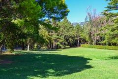 Parque bonito para andar Gramado verde, árvores e céu azul montenegro fotografia de stock
