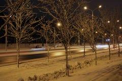 Parque bonito para andar na noite no inverno fotografia de stock royalty free