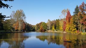 Parque botânico no outono, Istambul do arboreto de Ataturk fotos de stock royalty free