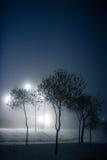 Parque brumoso Foto de archivo libre de regalías