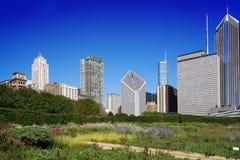 Parque céntrico de Chicago imágenes de archivo libres de regalías