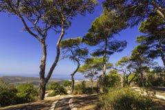 Parque Carmel imagen de archivo libre de regalías