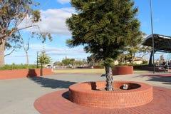 Parque centenario Bunbury Australia occidental Imagen de archivo