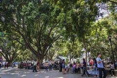 Parque central da plaza, Oaxaca, México imagens de stock royalty free