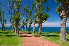 Parque cerca del palacio de Sobrellano Comillas, Cantabria, España imágenes de archivo libres de regalías