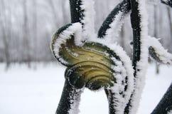Parque coberto de neve do fragmento da grade do jardim no fundo Imagens de Stock