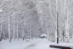 Parque coberto de neve e bancos do inverno Parque e cais para alimentar Fotografia de Stock