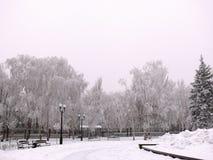 Parque coberto de neve na cidade de Donetsk imagem de stock